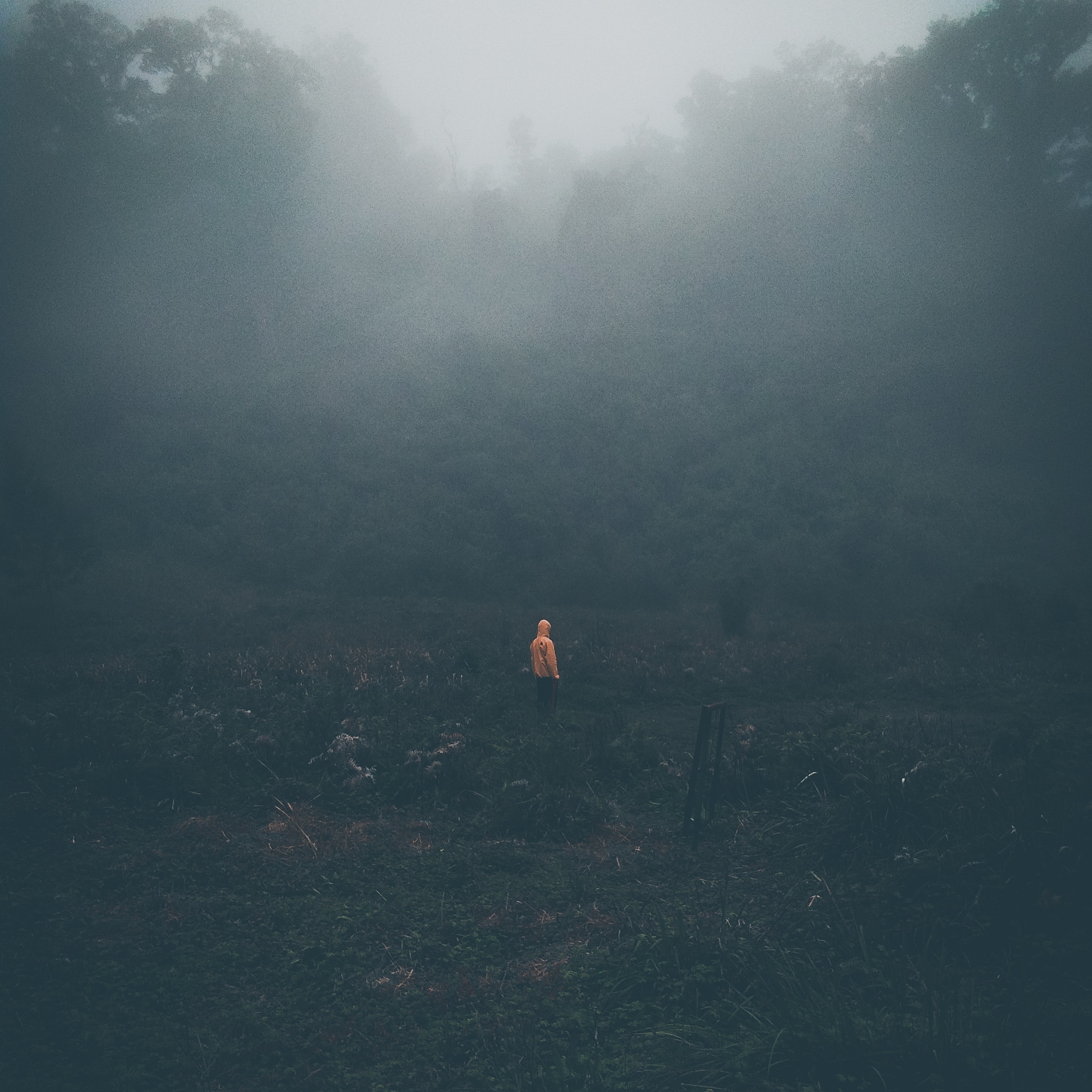 alone-dark-dark-background-2894944